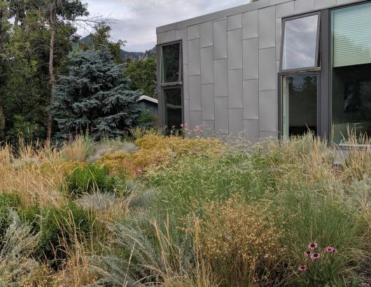 Green Roof Architect Karla Dakin Green Roof Awards