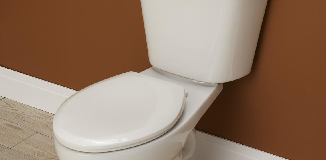 Gerber has added a MaP Premium dual-flush toilet to its high-performance Viper product line.