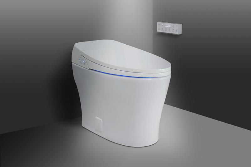 Super 7 High Tech Smart Toilets With Bidets Inzonedesignstudio Interior Chair Design Inzonedesignstudiocom